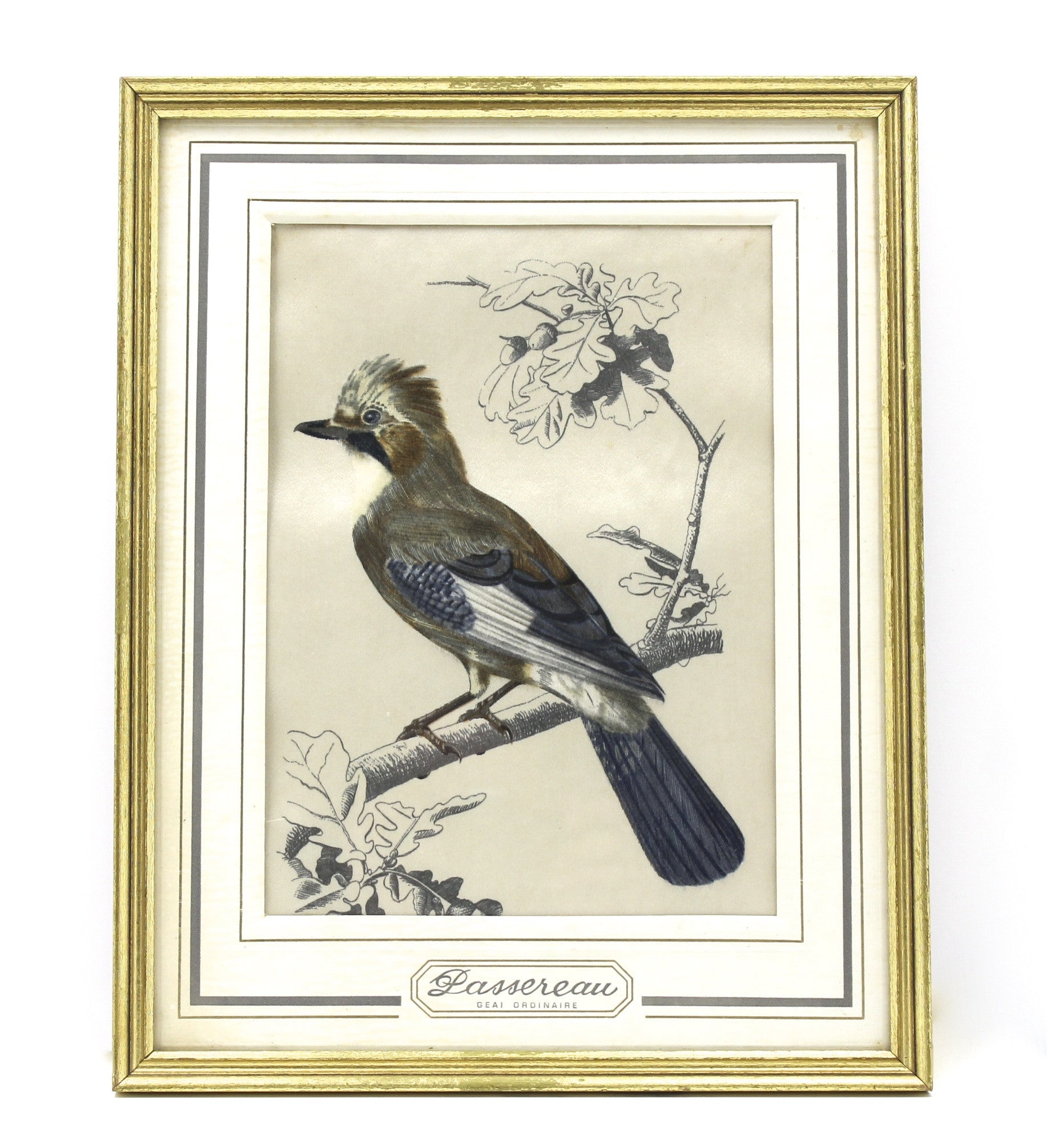 Bianchini-Frier framed bird velvet
