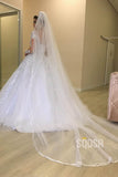 Ball Gown V-neck Illusion Long Sleeves Appliques Wedding Dress Bridal Gown QW2103|SQOSA
