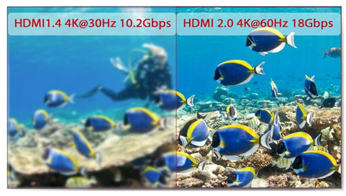 4KEX60-H2_4K60 Ultra HD Video