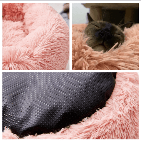 dog-bed-reviews-What-type-of-dog-bed-is-best