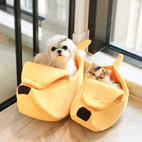 banana-cave-pet-bed-banana-pet-bed-and-breakfast-banana-pet-bed-design