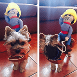 dog-halloween-costume-near-me-dog-costume-with-cowboy