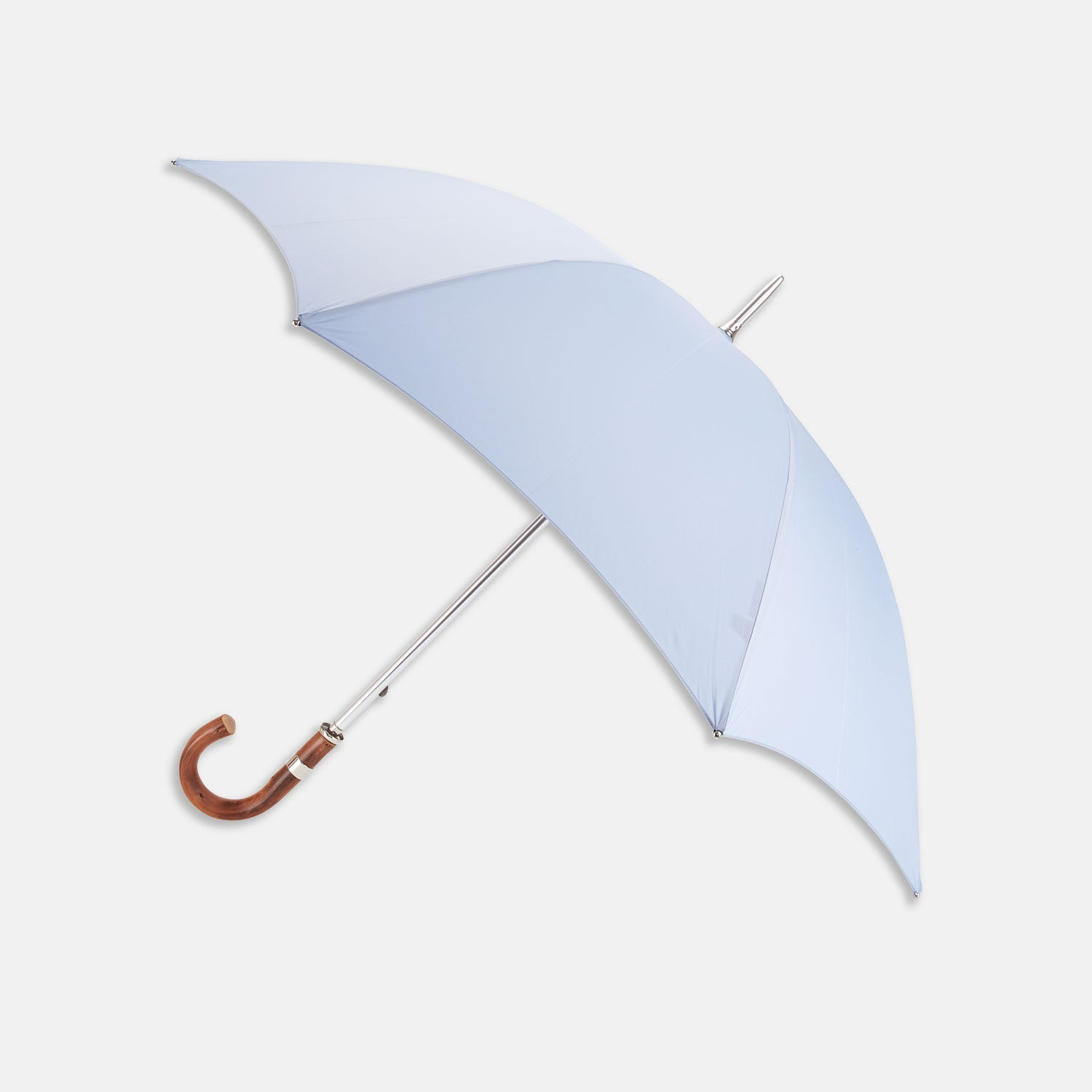 Light Blue Umbrella with Chestnut Crook