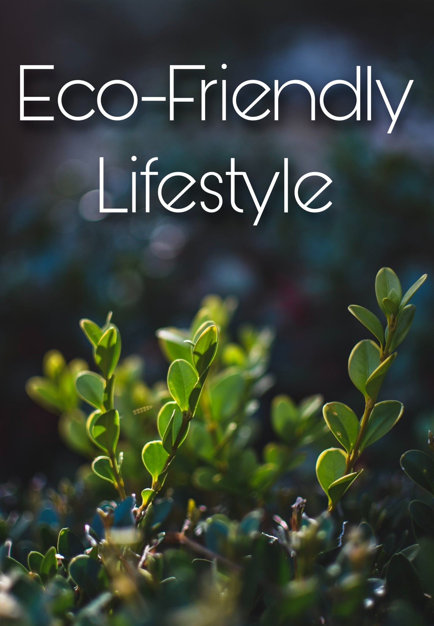 8 Eco-Friendly Products For Your Eco-Friendly Lifestyle