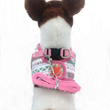 Fun Pink Harness/Leash Set