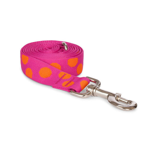 Recycled Polka Dot Dog Leash