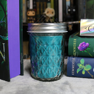 Silvermoon Harbour | A Curse so Dark and Lonely by Brigid Kemmerer | 200ml Soy Wax Candle