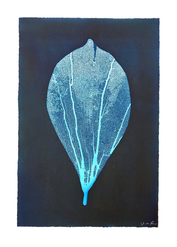 Jo de Pear - Almond Leaf unframed