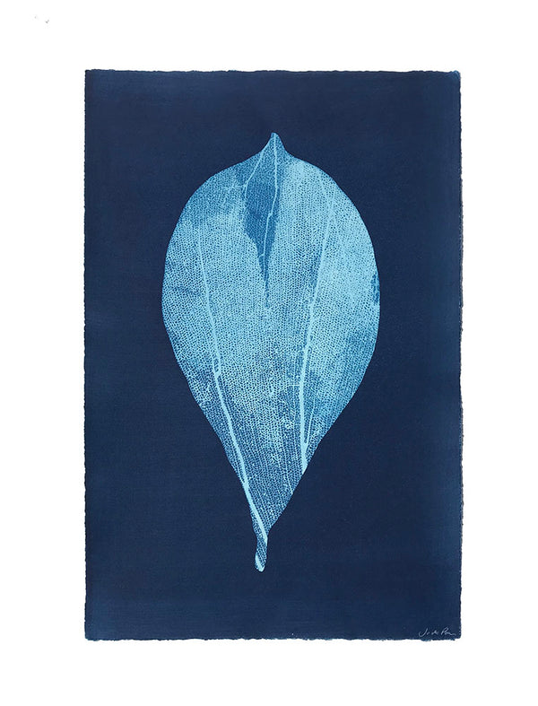 Jo de Pear - Almond Leaf II