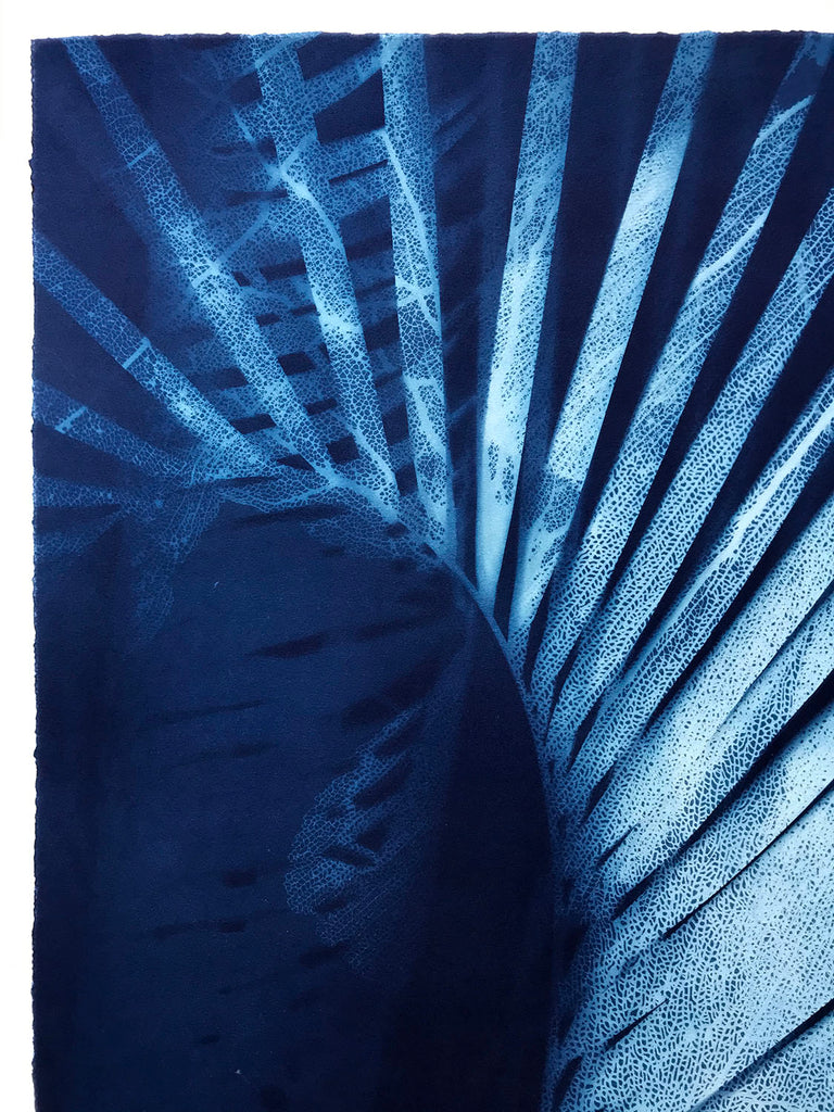 Jo de Pear cyanotype at Gas Gallery London