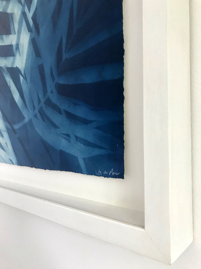 Coconut Palm I - framed by Jo de Pear at Gas Gallery