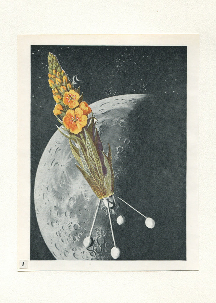 Vesna Vrdoljak -Flower in Space #1 - Original Collage - 2013