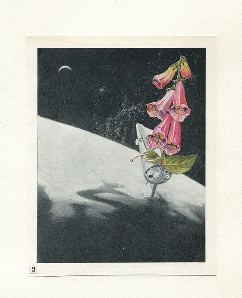Vesna Vrdoljak -Flower in Space #2 - Original Collage