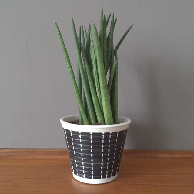 Denby Planter - Small