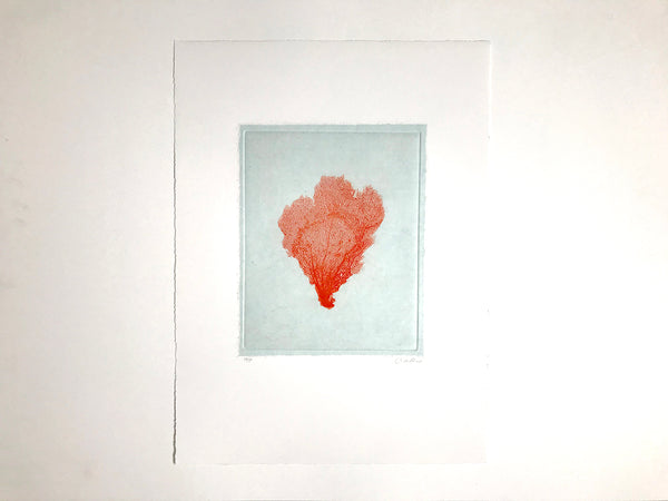 Jo de Pear - Sea Fan Etching II Red