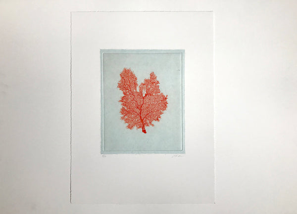 Jo de Pear - Sea Fan Etching III Red
