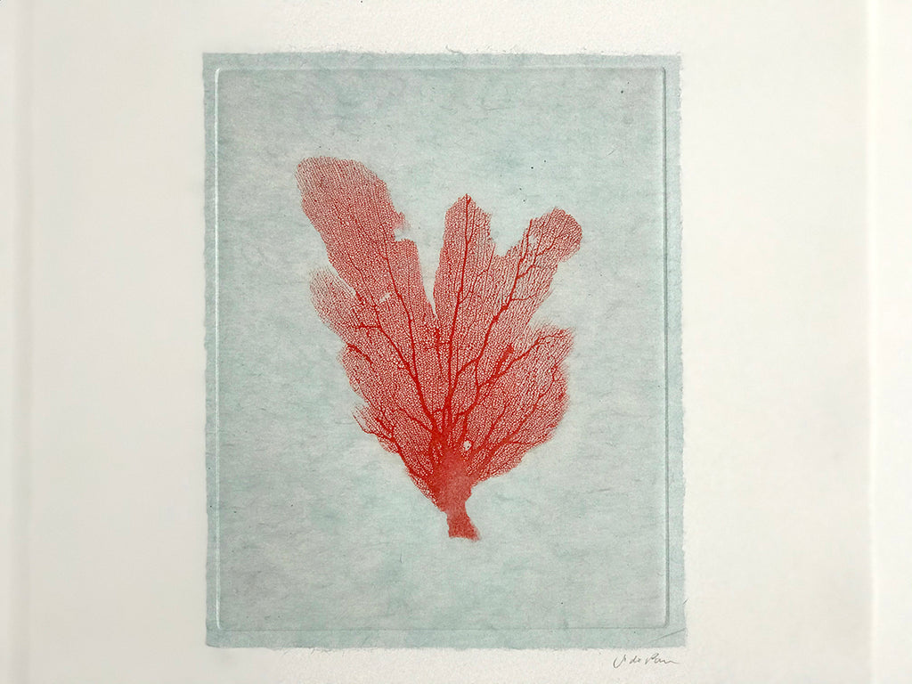 Jo de Pear - Sea Fan Etching IV Red