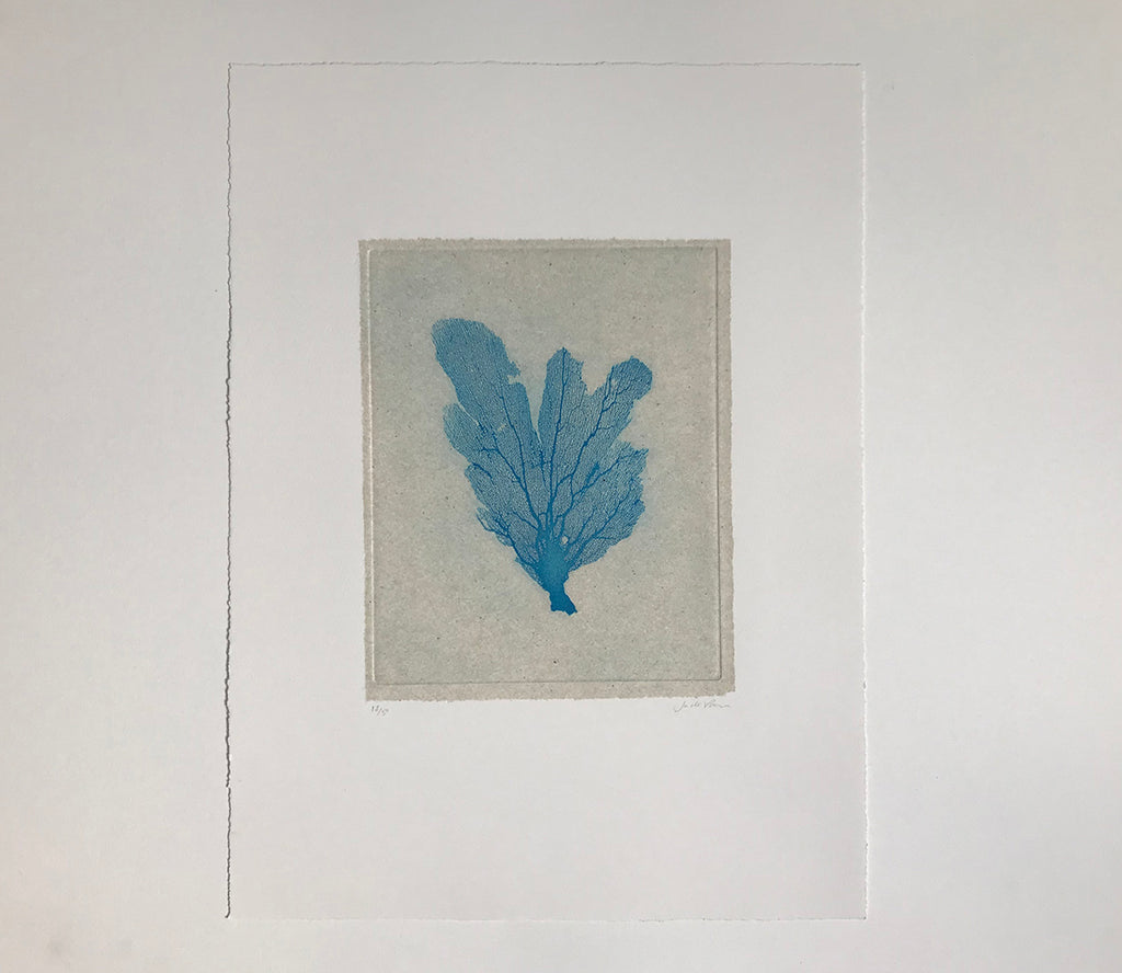 Jo de Pear - Sea Fan Etching IV Blue