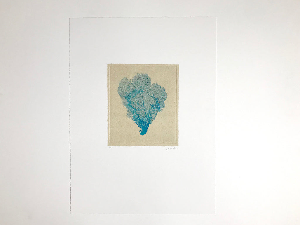 Jo de Pear - Sea Fan Etching II Blue on White