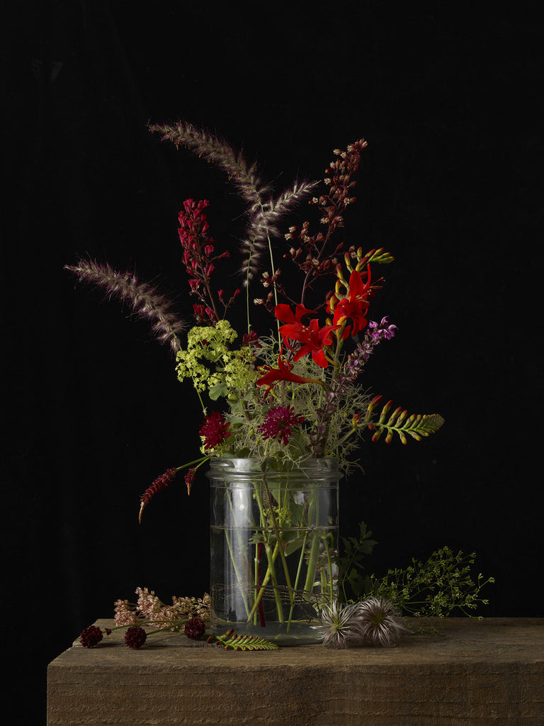 Kevin Dutton Photography: Mixed Plants at Gas Gallery