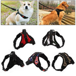 Load image into Gallery viewer, Hirundo® No-Pull Dog Harness, Adjustable Harness for Dogs