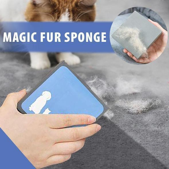 Magic Sponge , Catch All the Animal Hair