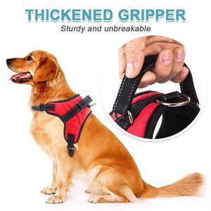 Hirundo® No-Pull Dog Harness, Adjustable Harness for Dogs