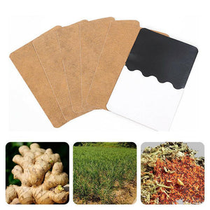Herb Ginger Patches (10/30/50 PCs)