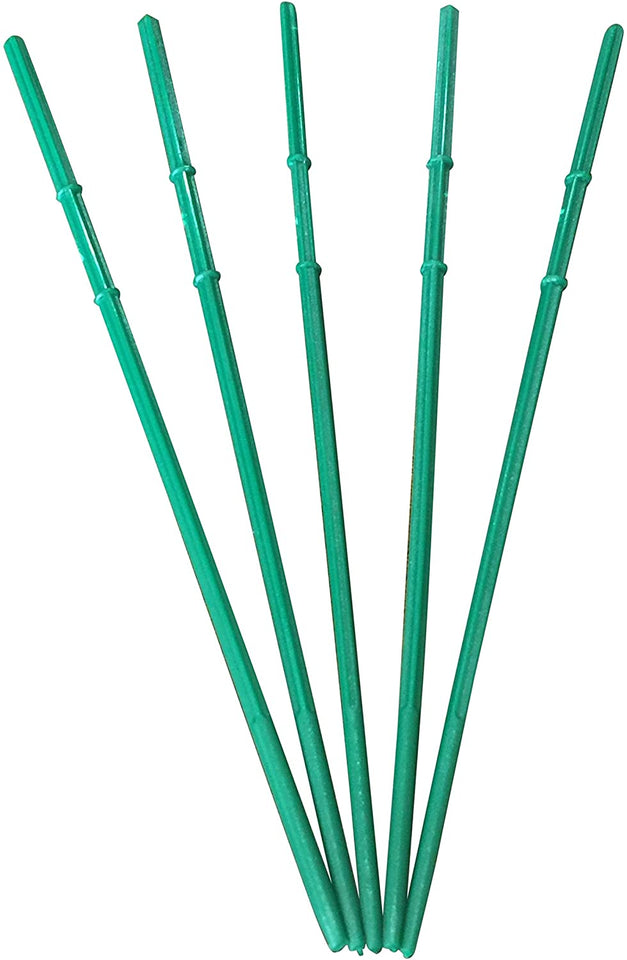 "Pack of 100 Skewers 8.66"" Inch with Ribs, Premium Cocktail Picks - Barbecue Stick (Green)"