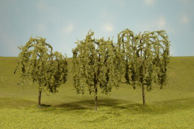"3""-3.5"" Willow Trees"