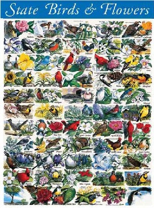 State Birds And Flowers 1000pc Puzzle