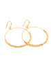 Laguna Drop Hoops In Gold