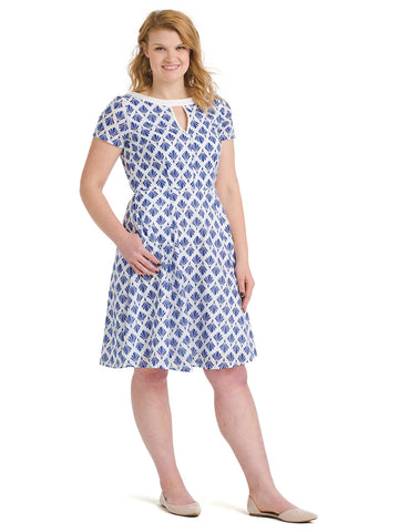 Blue And White Print Fit And Flare Dress