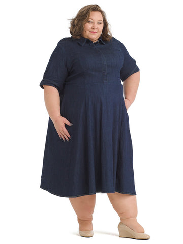 Button Front Denim Fit And Flare Dress