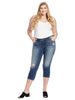 Frayed Hem Medium Caralyn Jeans