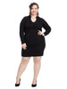 Long Sleeve V-Neck Black Dress