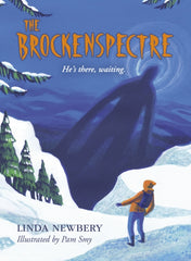 Brockenspectre, The by Linda Newbery (half class set, 15 books)