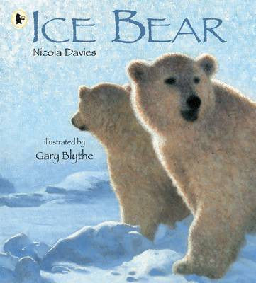 Ice bear book jacket
