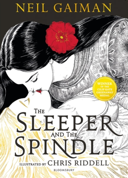 Sleeper and the Spindle, The by Neil Gaiman, Chris Riddell (class set, 30 books)