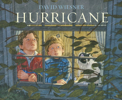 Hurricane by David Wiesner (group set, 7 books)