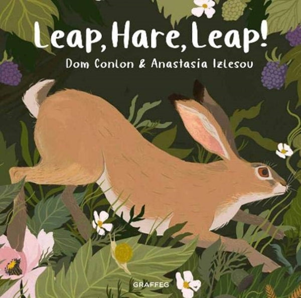 Leap Hare Leap by Dom Conlon and illustrated by Anastasia Izlesou