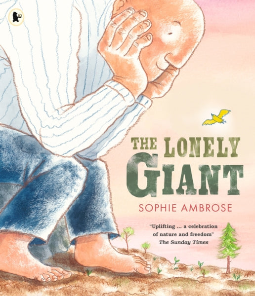 Lonely Giant, The by Sophie Ambrose (group set, 7 books)