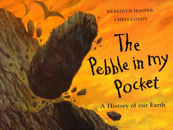 Pebble in My Pocket, The by Meredith Hooper, Chris Coady (half class set, 15 books)