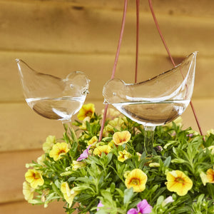 2 Pcs Self-Watering Plant Glass Bulbs-Next Deal Shop-Next Deal Shop