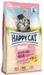 Kitten Care Cat Food