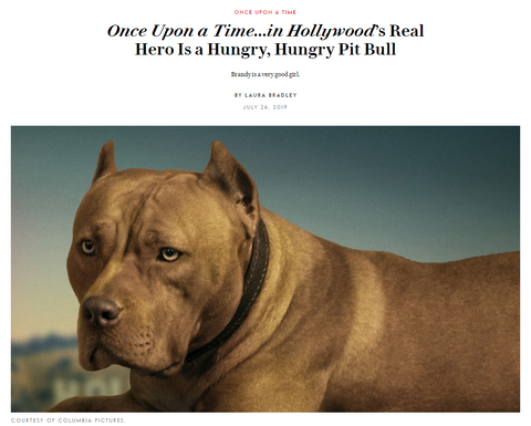Once Upon a Time in Hollywood pitbull, Delaware Red Pitbulls, Vanity Fair