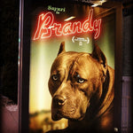 Brandy Pawtographed Official Picture. LIMITED