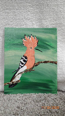 Roger the Hoopoes