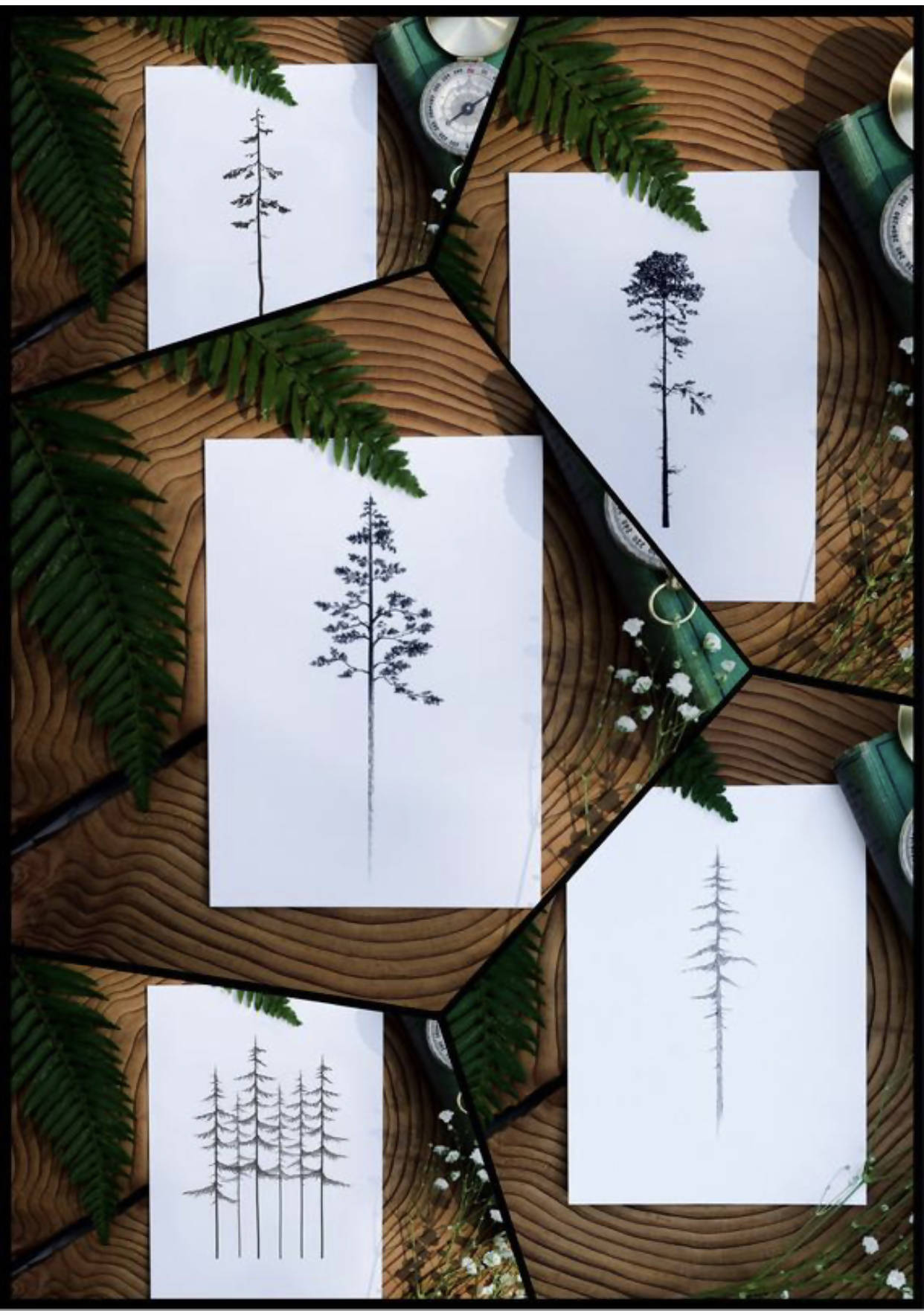 'Coastal Trees Collection' Set of 5 Prints