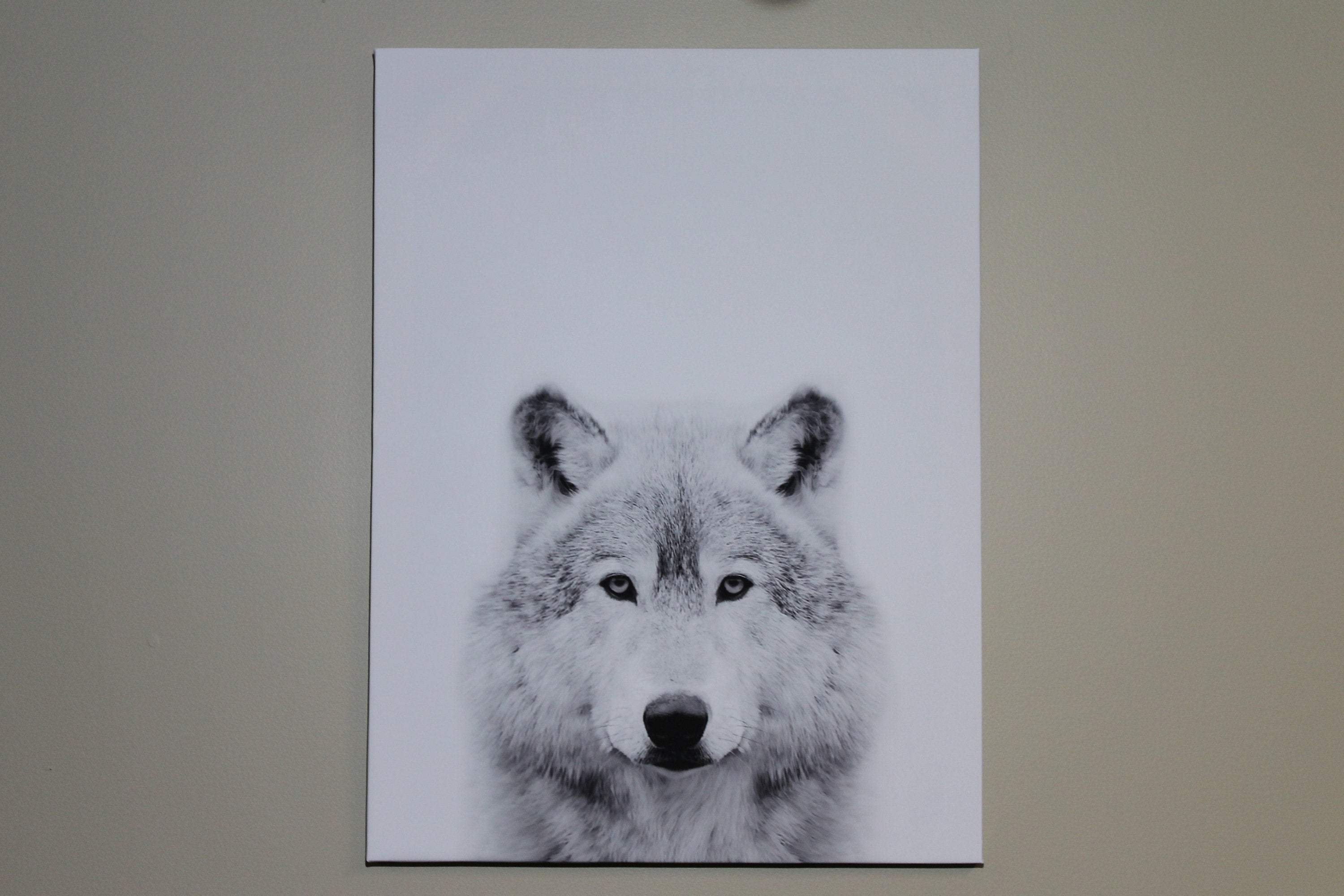 "Canvas print ""Wolf Black and white"""
